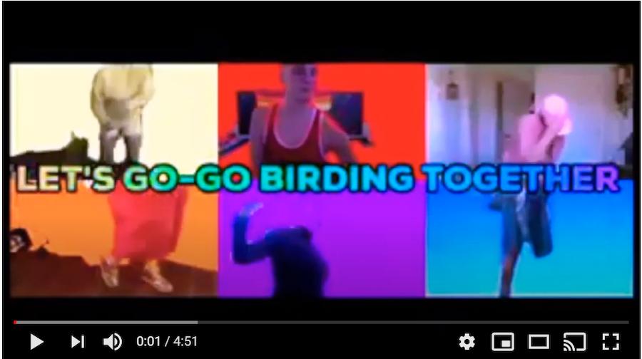 Go-Go Birding Video